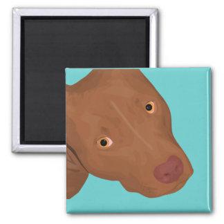 Cute Pit Bull portrait Refrigerator Magnet