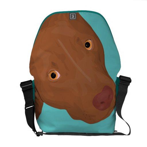 Cute Pit Bull's Portrait Commuter Bags