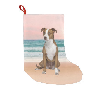 Cute Pitbull Dog Sitting on Beach with sunset Small Christmas Stocking