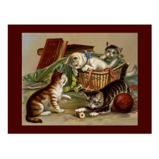 Cute Playful Kittens Postcard
