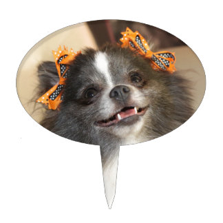 Cute Pomeranian dog Cake Pick