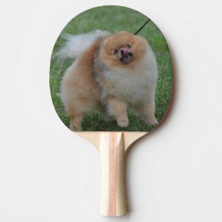 Cute Pomeranian Ping Pong Paddle
