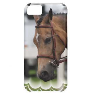 Cute Pony iPhone 5C Covers