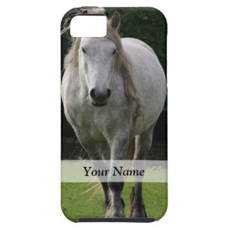 Cute pony photograph iPhone 5 case