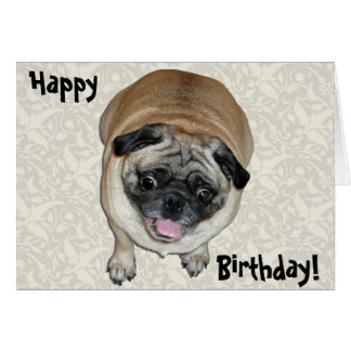 Cute Pug Dog Birthday Card