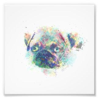 Cute pug puppy watercolor splatters paint art photo