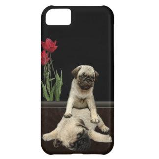 Cute Pug Pups Dog-lovers Phone Case