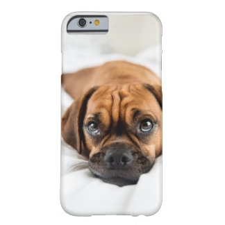 Cute Puggle Dog Case