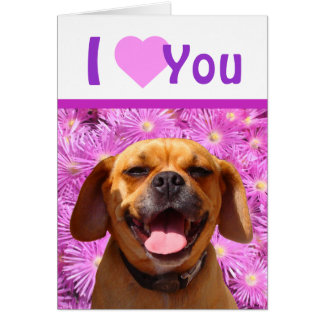 Cute Puggle Valentine Card