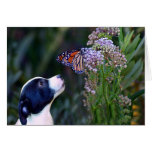 Cute Puppy and Butterfly Thank You Card