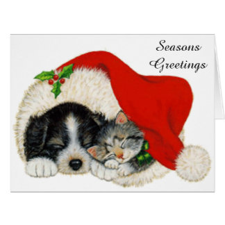 Cute Puppy And Kitten Sleep In A Santa Hat Card