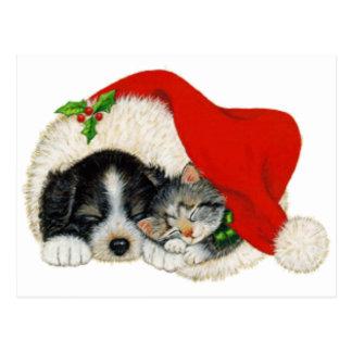 Cute Puppy And Kitten Sleep In A Santa Hat Postcard