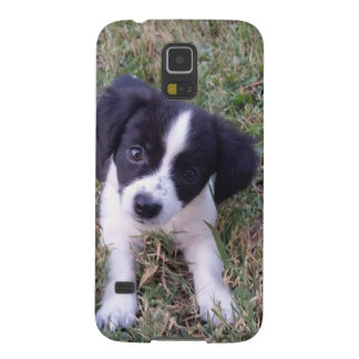 Cute Puppy Case For Galaxy S5
