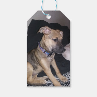 Cute Puppy Gift Tags