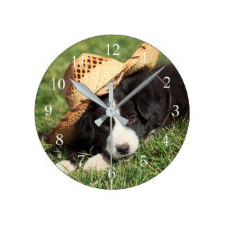 Cute Puppy Photo Border Collie Dog Photo Round Clock