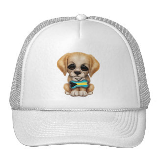 Cute Puppy with Bahamas Flag Dog Tag Hat