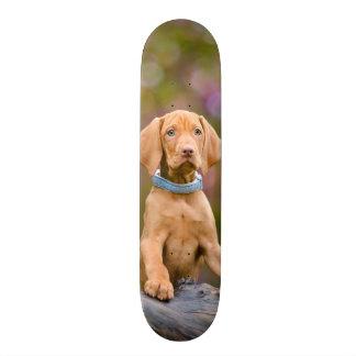 Cute puppyeyed Hungarian Vizsla Dog Puppy Photo -_ 19.7 Cm Skateboard Deck