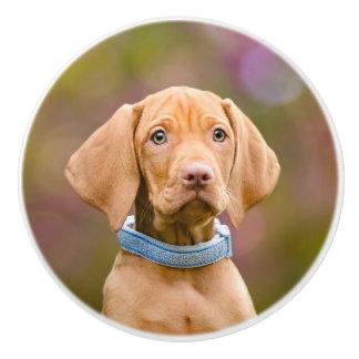 Cute puppyeyed Hungarian Vizsla Dog Puppy Photo .. Ceramic Knob