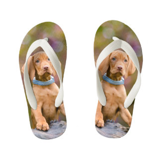 Cute puppyeyed Hungarian Vizsla Dog Puppy Photo -- Kid's Thongs