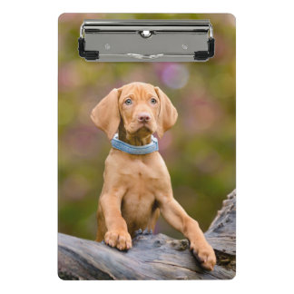 Cute puppyeyed Hungarian Vizsla Dog Puppy Photo // Mini Clipboard