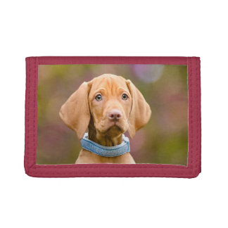 Cute puppyeyed Hungarian Vizsla Dog Puppy Photo . Trifold Wallet