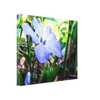 Cute Purple Flower Canvas Print