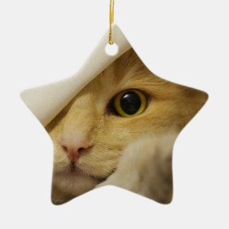Cute Pussy Cat Ceramic Star Decoration