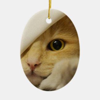 Cute Pussy Cat Ceramic Oval Decoration