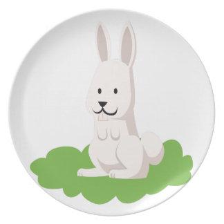 cute rabbit animal plates