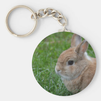 Cute Rabbit Basic Round Button Key Ring