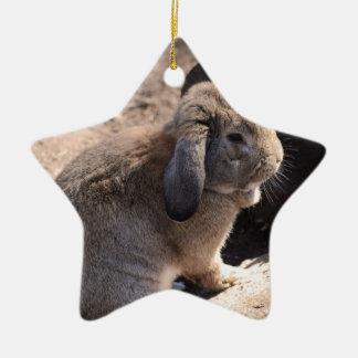 Cute Rabbit Ceramic Star Decoration