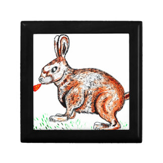 Cute Rabbit Drawing Gift Box