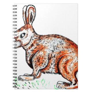 Cute Rabbit Drawing Notebooks