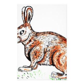 Cute Rabbit Drawing Stationery
