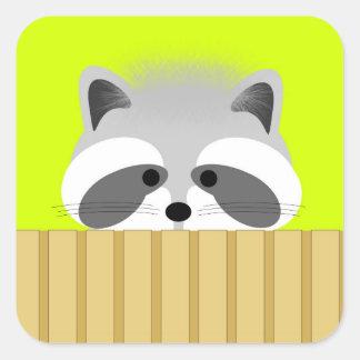 Cute Raccoon Stickers