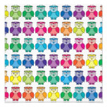 Cute Rainbow Owl Pattern Photo