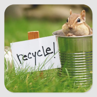 Cute Recycling Chipmunk Square Sticker