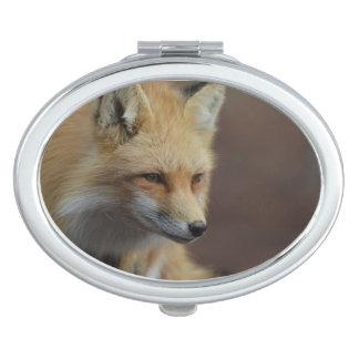 Cute Red Fox Vanity Mirrors