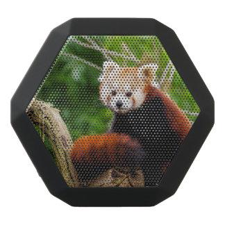 Cute Red Panda Bear Black Bluetooth Speaker
