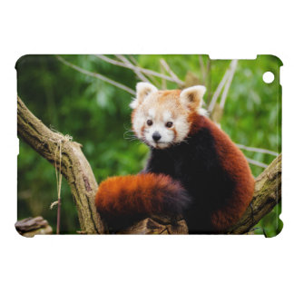 Cute Red Panda Bear Cover For The iPad Mini