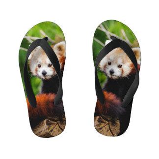 Cute Red Panda Bear Kid's Thongs