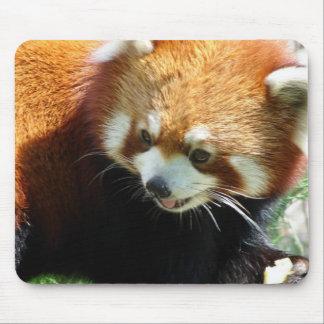 Cute Red Panda Bear Mouse Pad