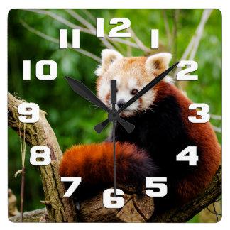 Cute Red Panda Bear Wallclock