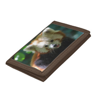 Cute Red Panda Tri-fold Wallet