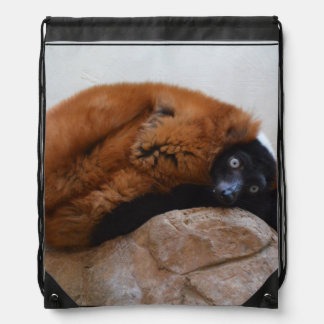 Cute Red Ruffed Lemur Drawstring Bag