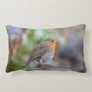 Cute Robin pillow