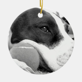 cute sad looking pitbull dog black white with ball ceramic ornament