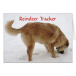 Cute Santa & Reindeer Search & Rescue Dog