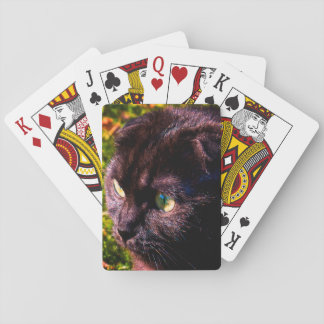 Cute Scottish Fold Sunny Face Playing Cards