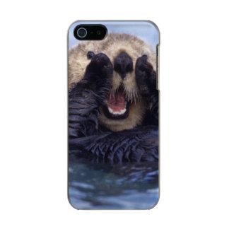Cute Sea Otter | Alaska, USA Incipio Feather® Shine iPhone 5 Case